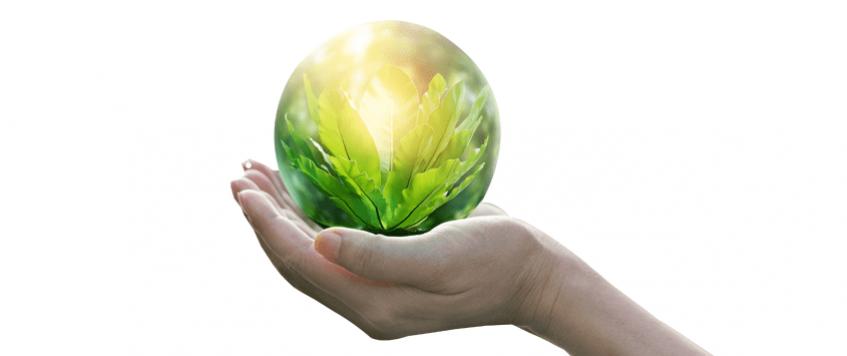 Sustentabilidade não precisa ser difícil